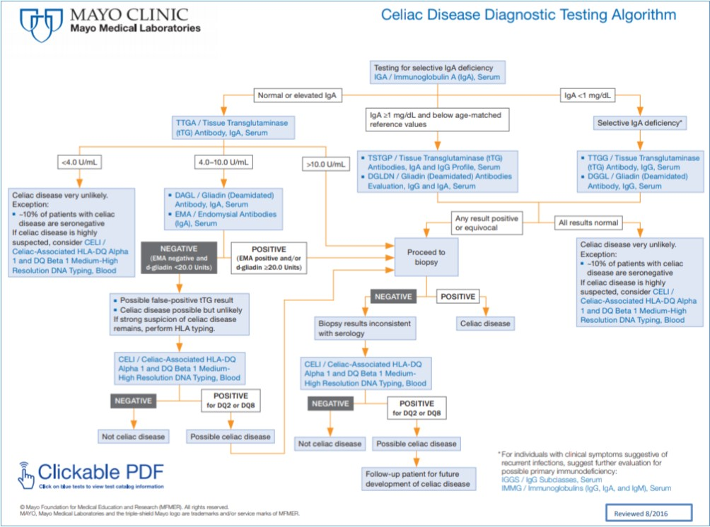 Mayo Clinic Celiac Disease Diagnostic Testing Algorithm